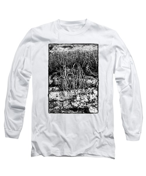 Poison Ivy Roots Long Sleeve T-Shirt by Judi Bagwell