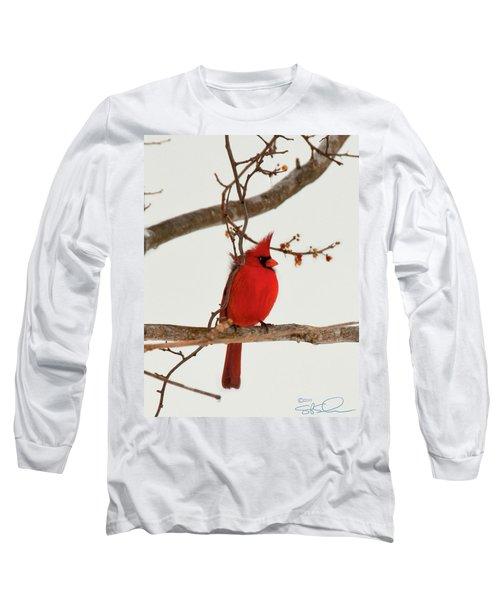 Righteous Cardinal Long Sleeve T-Shirt