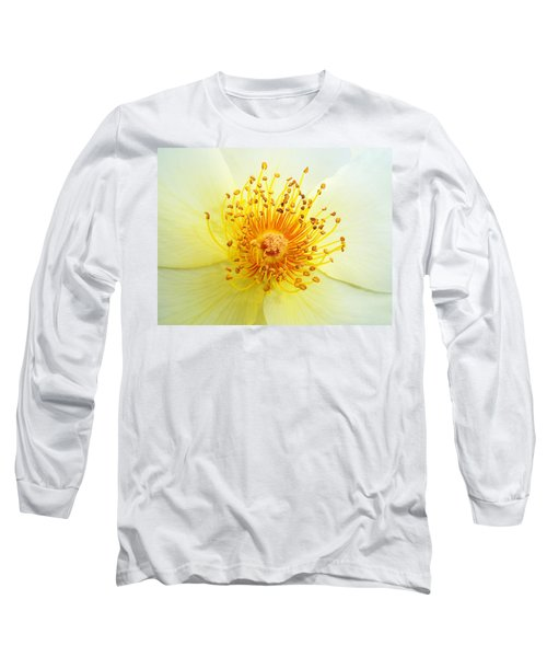 Rosa Golden Wings Long Sleeve T-Shirt