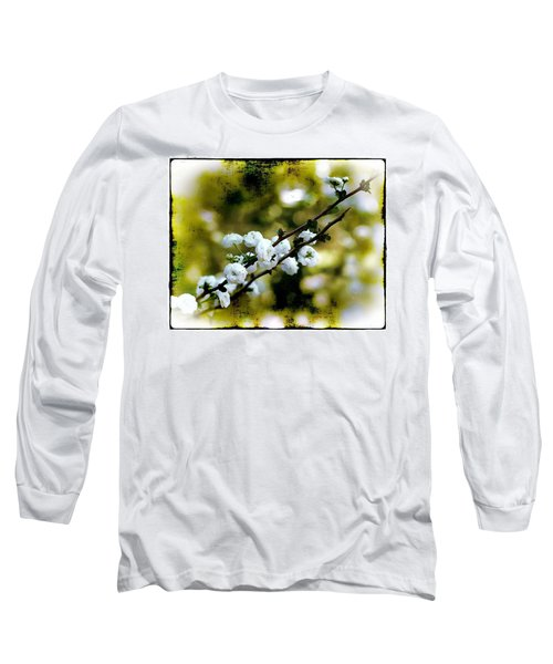 Spring Bough Long Sleeve T-Shirt by Judi Bagwell