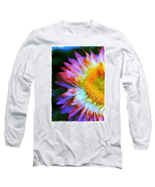 Strawflower Long Sleeve T-Shirt by Judi Bagwell