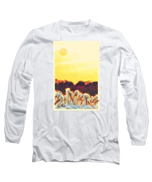 Long Sleeve T-Shirt featuring the photograph White Pelicans In Sun by Dan Friend