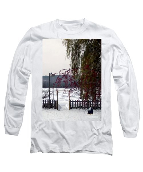 Willows And Berries In Winter Long Sleeve T-Shirt by Desiree Paquette