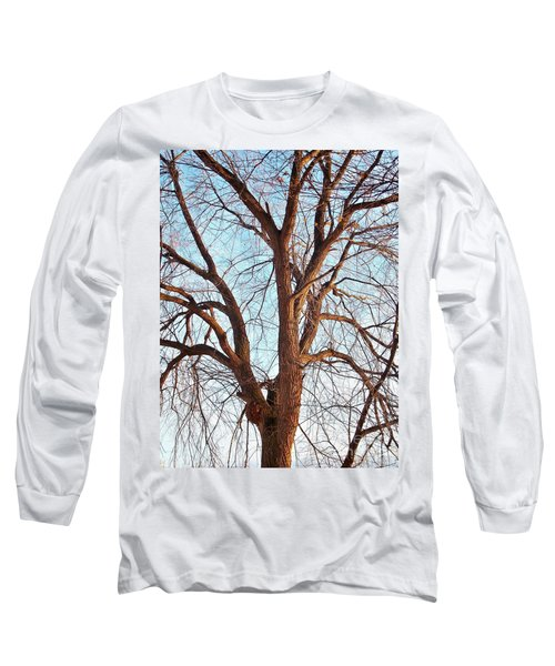Long Sleeve T-Shirt featuring the photograph Winter Light by Chalet Roome-Rigdon