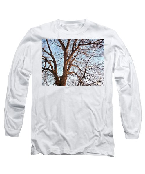 Long Sleeve T-Shirt featuring the photograph Winter Sunlight On Tree  by Chalet Roome-Rigdon