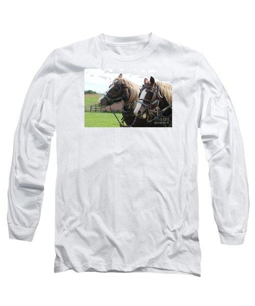 Belgian Horses Long Sleeve T-Shirt by Yumi Johnson