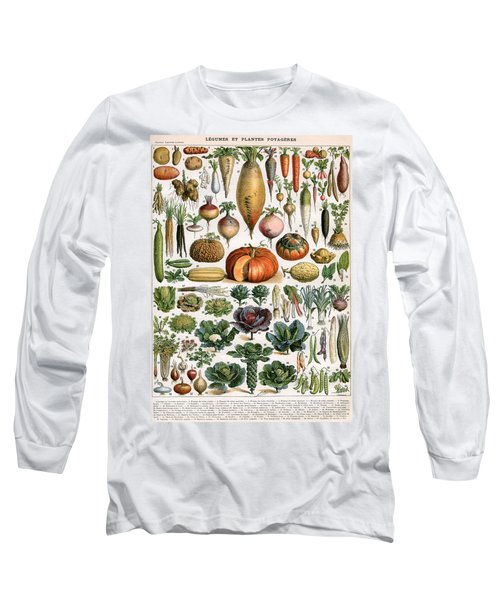 Illustration Of Vegetable Varieties Long Sleeve T-Shirt by Alillot