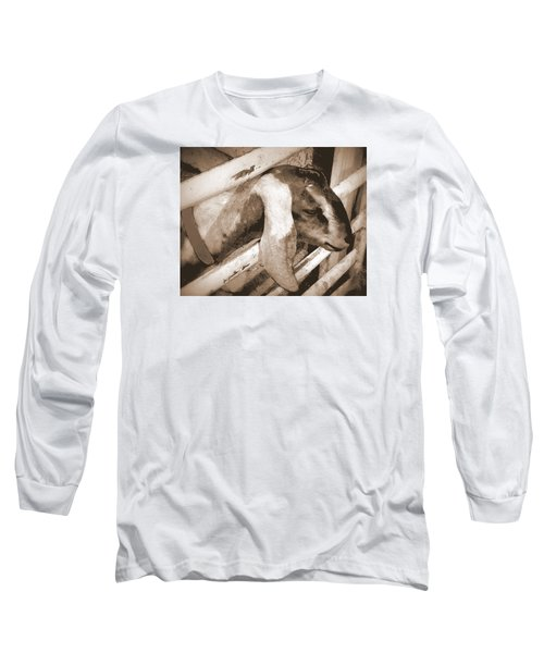 A Friend Long Sleeve T-Shirt by Jodie Marie Anne Richardson Traugott          aka jm-ART
