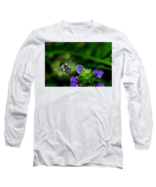 Approaching Long Sleeve T-Shirt