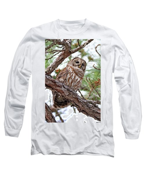 Barred Owl In Pine Tree Long Sleeve T-Shirt