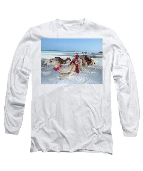 Camel On Beach Kenya Wedding4 Long Sleeve T-Shirt