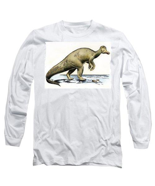 Dinosaur: Corythosaurus Long Sleeve T-Shirt