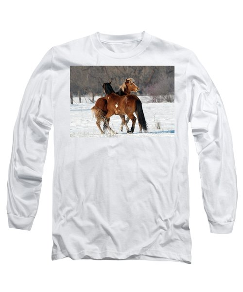 Long Sleeve T-Shirt featuring the photograph Horseplay by Mike Dawson