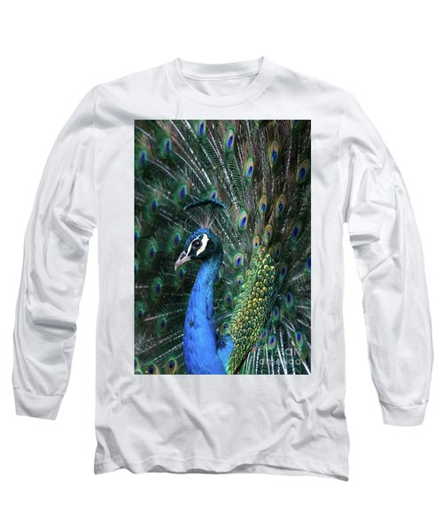 Indian Peacock With Tail Feathers Up Long Sleeve T-Shirt