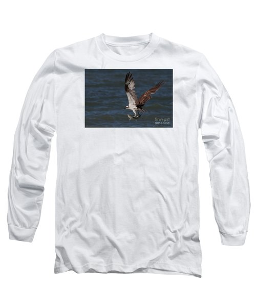 Osprey In Flight Long Sleeve T-Shirt by Meg Rousher