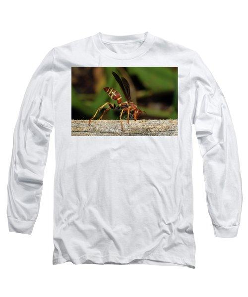 Paper Wasp Long Sleeve T-Shirt