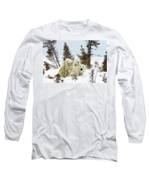 Polar Bear Ursus Maritimus Trio Long Sleeve T-Shirt