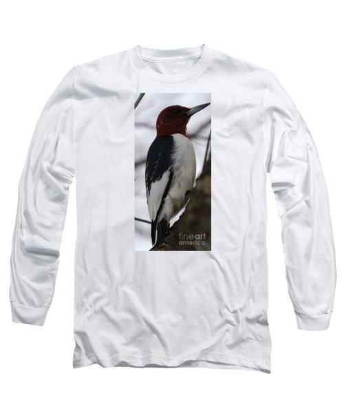 Red-headed Woodpecker Long Sleeve T-Shirt by Randy Bodkins