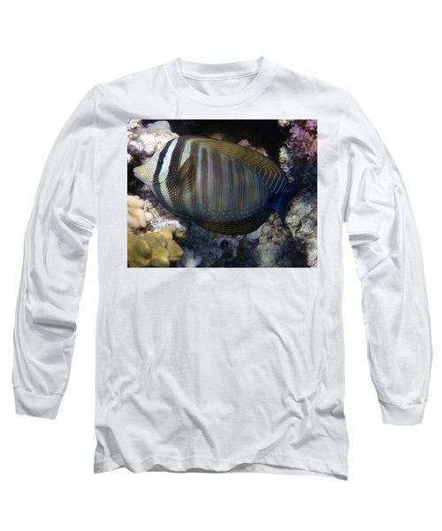 Red Sea Sailfin Tang  Long Sleeve T-Shirt