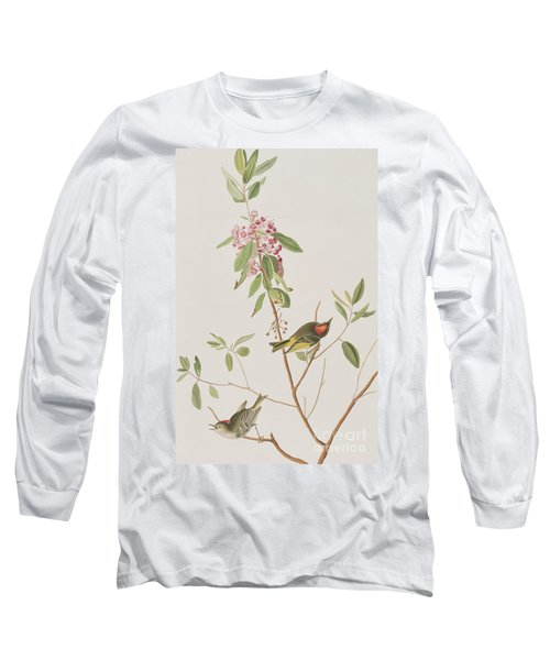 Ruby Crowned Wren Long Sleeve T-Shirt