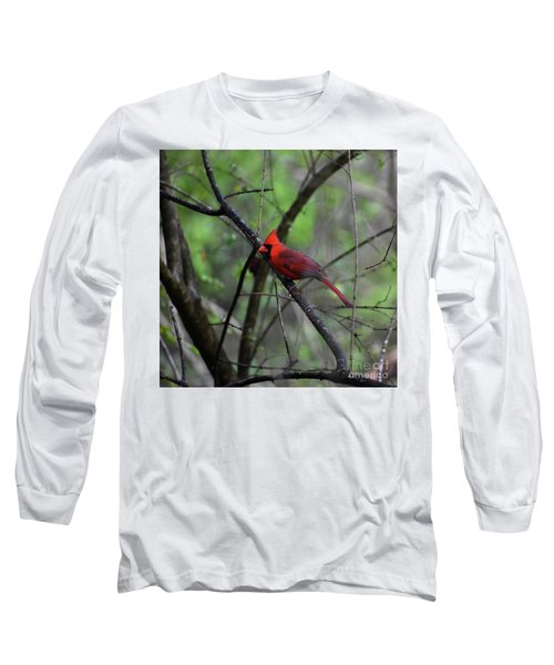 Long Sleeve T-Shirt featuring the photograph Saint Louis by Skip Willits