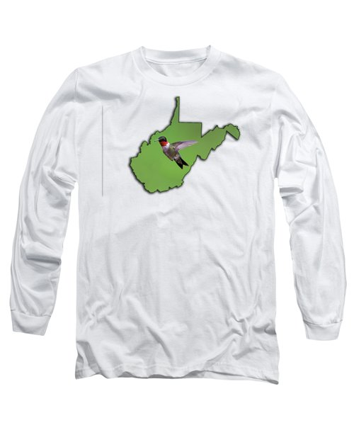 The Ruby-throated Hummingbird Long Sleeve T-Shirt by Dan Friend