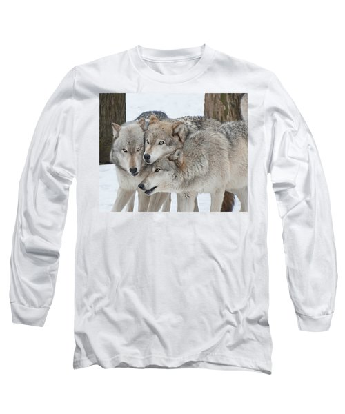 Three Wolves Are A Crowd Long Sleeve T-Shirt by Gary Slawsky