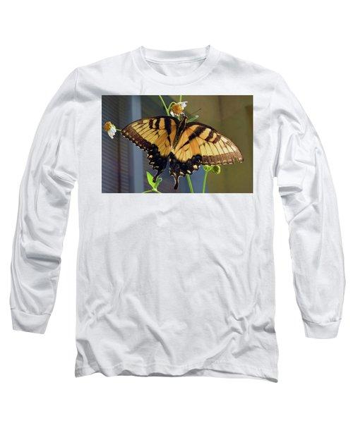 Tiger Swallowtail Long Sleeve T-Shirt