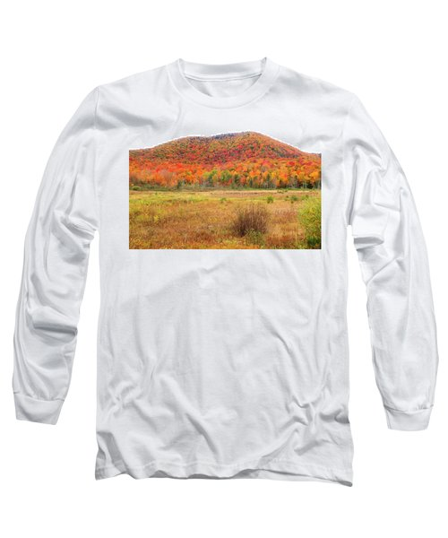 Vermont Foliage 1 Long Sleeve T-Shirt