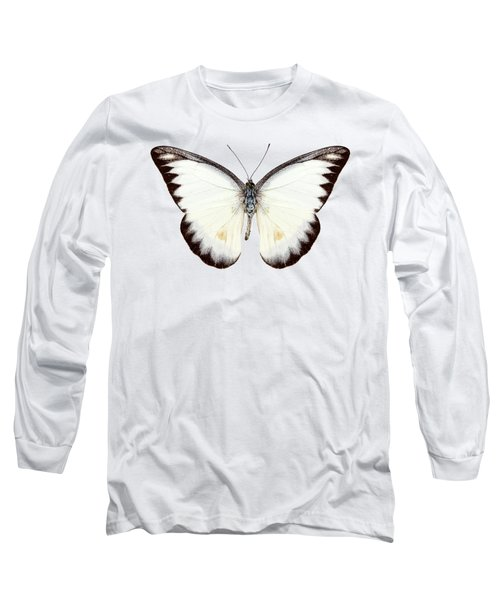 White Butterfly Species Appias Lyncida Long Sleeve T-Shirt
