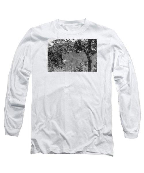 Wildlife Long Sleeve T-Shirt by Daniel Precht