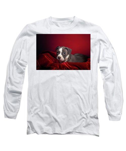 American Pitbull Puppy Long Sleeve T-Shirt by Peter Lakomy