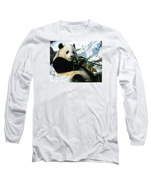 Bao Bao Sittin' In The Snow Taking A Bite Out Of Bamboo1 Long Sleeve T-Shirt by Emmy Marie Vickers