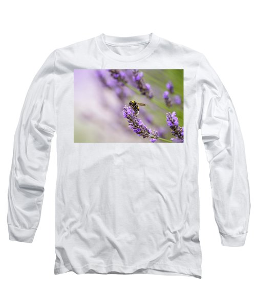 Bumblebee And Lavender Long Sleeve T-Shirt