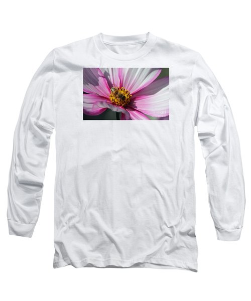 Busy Bee Long Sleeve T-Shirt by Yumi Johnson