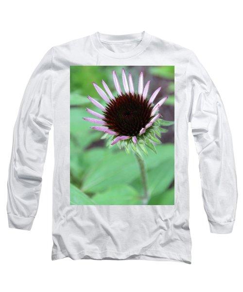 Emerging Coneflower Long Sleeve T-Shirt by Rebecca Overton