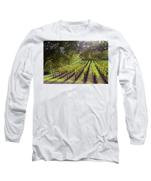 Grapevines In The Fall Long Sleeve T-Shirt