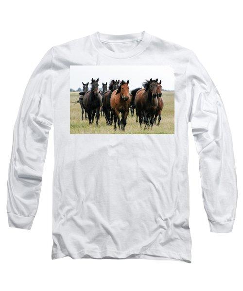 Horse Herd On The Hungarian Puszta Long Sleeve T-Shirt