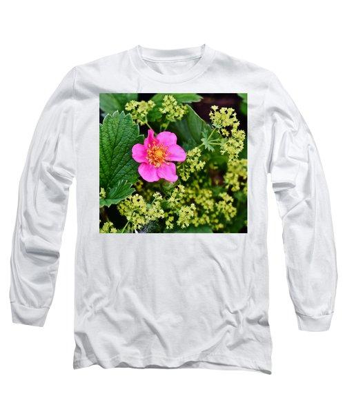 2015 Summer's Eve At The Garden Lipstick Strawberry Long Sleeve T-Shirt
