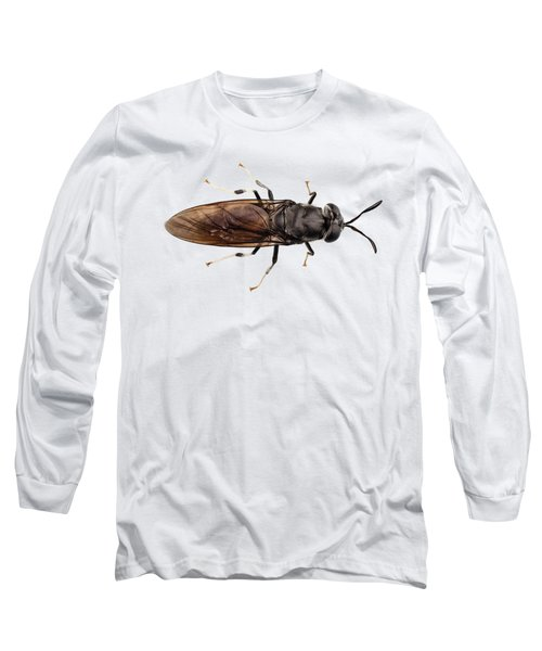 black soldier fly species Hermetia illucens Long Sleeve T-Shirt