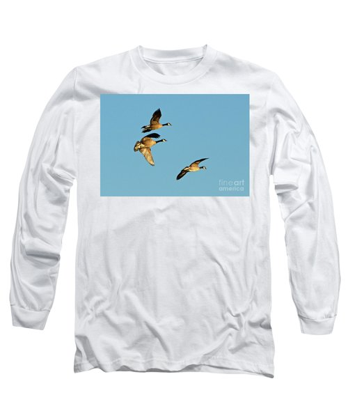 3 Geese In Flight Long Sleeve T-Shirt
