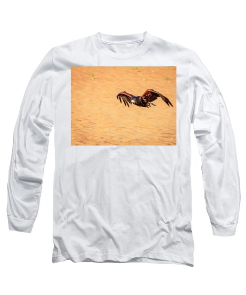 Long Sleeve T-Shirt featuring the photograph Harris Hawk by Alexey Stiop