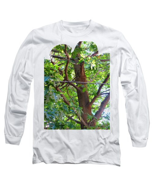 Shirts N Pod Gifts Boston N Surrounding Area Nature Photography By Navinjoshi Fineartamerica Pixles Long Sleeve T-Shirt