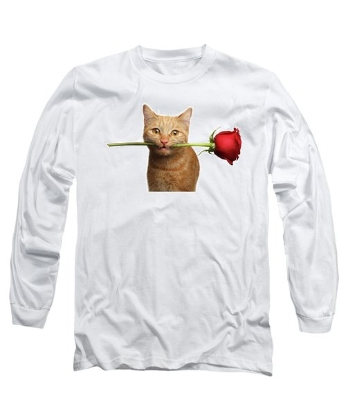 Portrait Of Ginger Cat Brought Rose As A Gift Long Sleeve T-Shirt by Sergey Taran