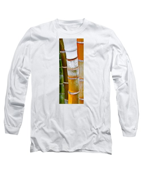 Bamboo Palm Long Sleeve T-Shirt by Werner Lehmann
