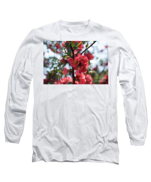 Tree Blossoms Long Sleeve T-Shirt