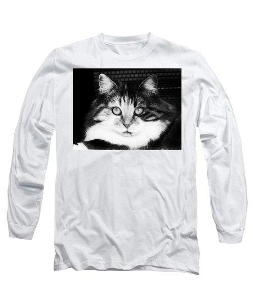 Gaze Long Sleeve T-Shirt by Zinvolle Art