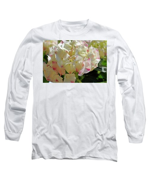 Long Sleeve T-Shirt featuring the photograph A Blush Of Pink by Cricket Hackmann
