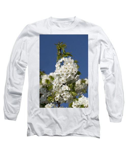 A Cluster Of Cherry Flowers Blossoming In The Springtime Long Sleeve T-Shirt