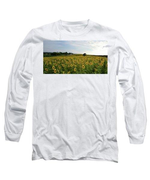 A Field Of Sunflowers Long Sleeve T-Shirt